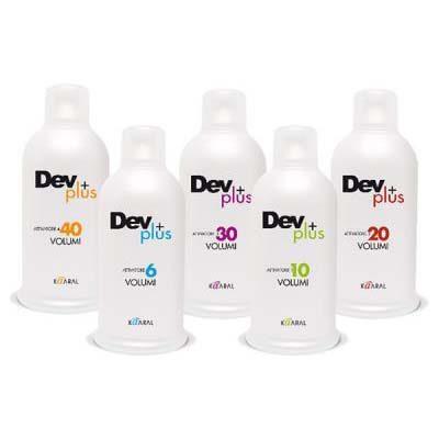 DEV + Developer